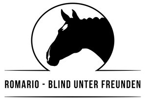 Romario Logo